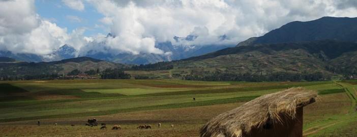Peruvian Highands